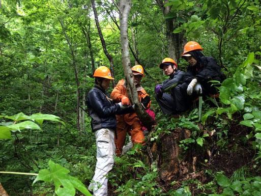 【初級森林実習】森と暮らしをつなぐ人になる。その3